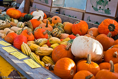 Wagon of squash (Culinary Fool) Tags: fall fruits vegetables pumpkin farmersmarket squash produce universitydistrict culinaryfool udist 2470mm28 udfm