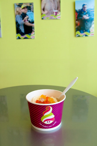 Frozen Yogurt at Menchie's