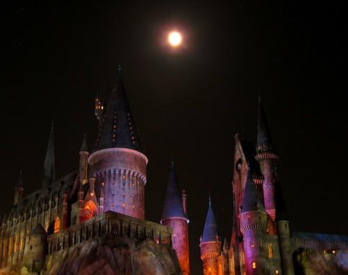Hogwarts at Night by Danalynn C