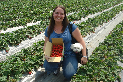 Me, Gibs, and our Strawberries
