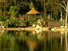 Mile Square Park (Mine Beyaz) Tags: california lake green water reflections gazebo su orangecounty reflexions gol gardengrove yansima fpc 25faves anawesomeshot theunforgettablepictures simplysuperb mailciler minebeyaz