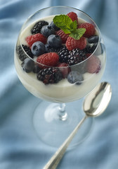 VanillaYogurt&Berries (fhansenphoto) Tags: red black fruit dessert berries vanilla yogurt raspberries blueberries