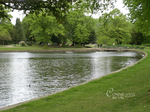 Pavilion Gardens 的湖畔一角