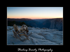 Sentinel Dome (Stealing-Beauty Photography) Tags: blue sunset forest state lakes tahoe el anseladams dorado sentineldome jefferrypine