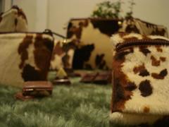 close (Fcula) Tags: notebook laptop artesanal pasta zebra veludo cinto brinco colar bolsas vaca ona cordo chaveiro pavo vaquinha oncinha estojo animalprint necessaire bolsinhas zebrinha portamoeda portalapis portadocumento chococow