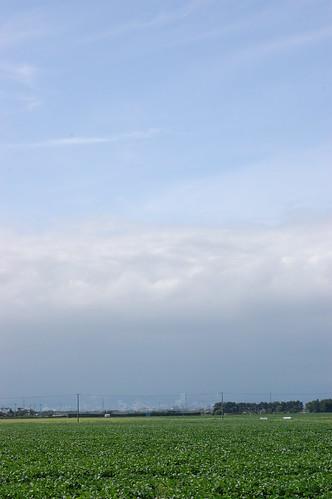 市内は曇り