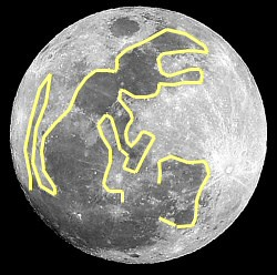 Tsukimi – Mirar la Luna class=