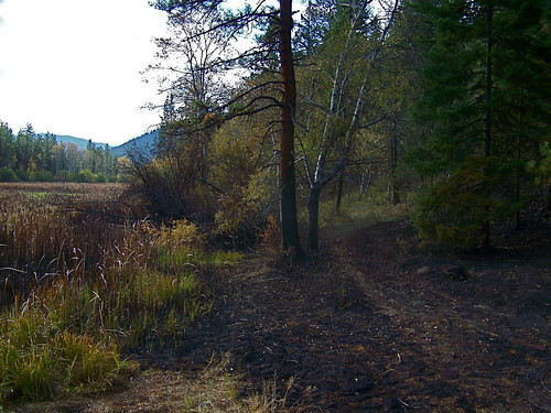 "Wildland fire at ""the swamp"""