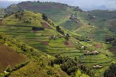 20071111_Uganda_011