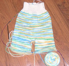 SL380554 (iCandiKnits) Tags: wool cloth soaker longies clothdiapers stk sheepypants