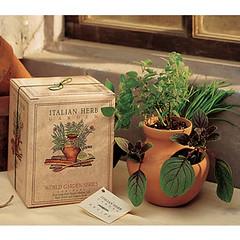 herb garden gift