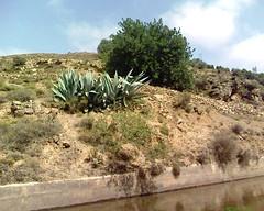 Idar3ouyen جبال بني يزناسن
