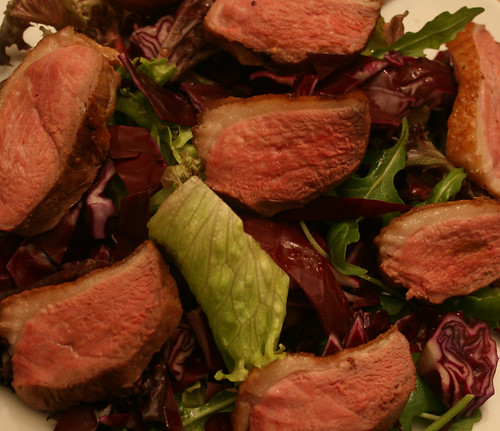 Duck and Red Cabbage Salad