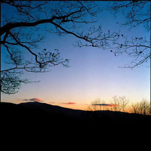 Blueridge Dusk