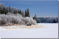 Winter in the Northwoods (nature55) Tags: winter wisconsin hoarfrost mercer upnorth northwoods turtleflambeauflowage nature55 158explorepages