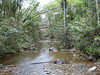 Charco azul river2 (Celt78) Tags: azul swimming puerto hole rico charco carite