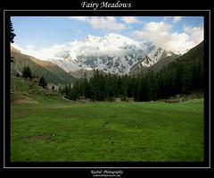 Raikot Sirai - Fairy Meadows