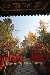蘇州2008 - 寒山寺(9)