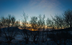 PC192269 (axelkr) Tags: winter wallpaper sky snow woodland iceland widescreen noon 1920x1200 1610 1440x900 1680x1050 1024x640 1280x800 2560x1600 kjarnaskgur 2048x1280