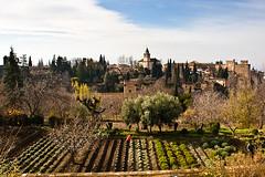 Alhambra Landscape by Justin Korn