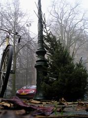 mist 's-Hertogenbosch