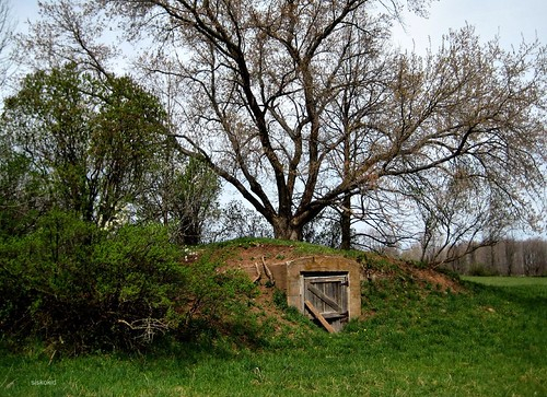 The Old Root Cellar