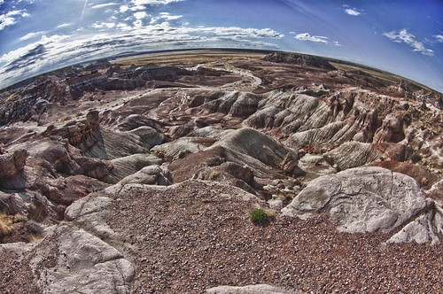 Petrified Forest Fisheye