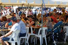 20140309-48-Taste of the Huon 2014.jpg (Roger T Wong) Tags: summer people food sun grass festival families australia tasmania stalls huon ranelagh 2014 canonef24105mmf4lisusm canon24105 tasteofthehuon canoneos6d rogertwong