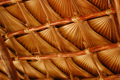 Palm patterns in the roof