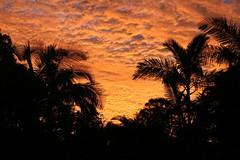 Sunset in Lawnton 4 of 6