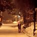 Snowy night (March 2008)