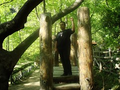 Big Bridge of Light (sotoz) Tags: water falls kozani kataraktes velvento metoxi aliakmonas belbento