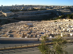 Mt Olives cemetery & Old City (betta design) Tags: old city tourism cemetery wall canon religious israel view palestine faith jerusalem olive powershot mount holy sacred vista jewish antiga monte cemitrio fe messiah turismo muralha santo sagrado messias judeu oliveiras sd870is ixus860is