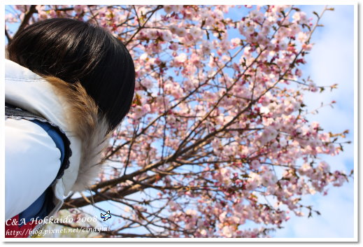 Hokkaido_1301