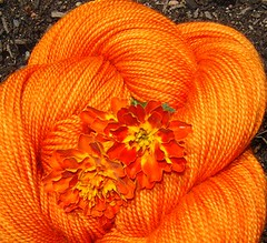 French Marigold Yarn with French Marigold