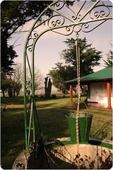 (Fermn Emanuel) Tags: verde sol maana argentina campo invierno tandil tranquilidad aljibe fercho ferminmathieu