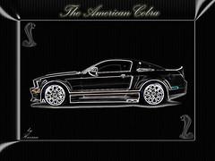 Black Mustang Cobra (Hassan87) Tags: wallpaper black cars ford car cobra shelby mustang     hassan87