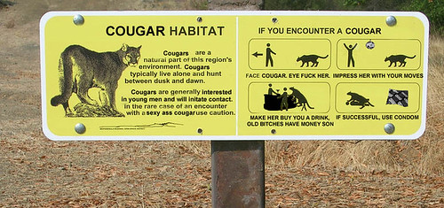 Cougar's be round here!