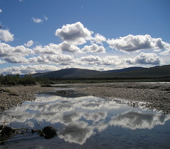 Cloud Reflection in some standing water along the Middle Fork Koyukuk River