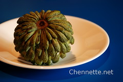 Sugar Apple on Blue