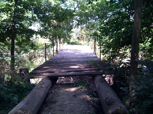 Horse bridge