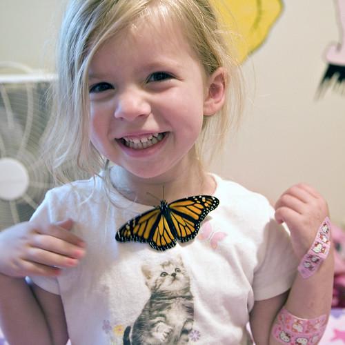 butterfly3w