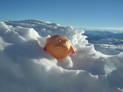 Peter's Pig on Cloud #9 (traveling peter) Tags: blue shadow sky cloud snow mountains alps toy austria pig gray january bluesky skiresort 2008 tyrol rugged zillertal skiarea bathtoy 999v9f zillertalarena plasticpig pigsforfun peterspig year2008 zillerrivervalley pileisthenewcloud
