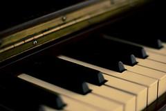 (wenzday01) Tags: music home d50 nikon bokeh piano nikond50 adobe nikkor lightroom 50mmf14ai insidelightroom hannesplittone