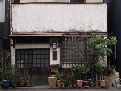 Tokyo Plant Pots 189  東京植木鉢 by tsuyatsuya.