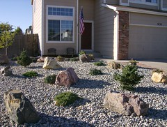 Front Yard with Plants
