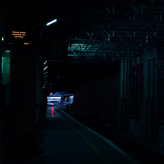 Lights, camera, no action (Ouendi) Tags: light london station sign yellow train darkness empty platform 8 victoria line stop canons3 gotjustenoughtimetotakethisbeforeastationworkergesturedtomeiwasntallowedto ishouldntreallybesurprised atleastiwasntquestioned