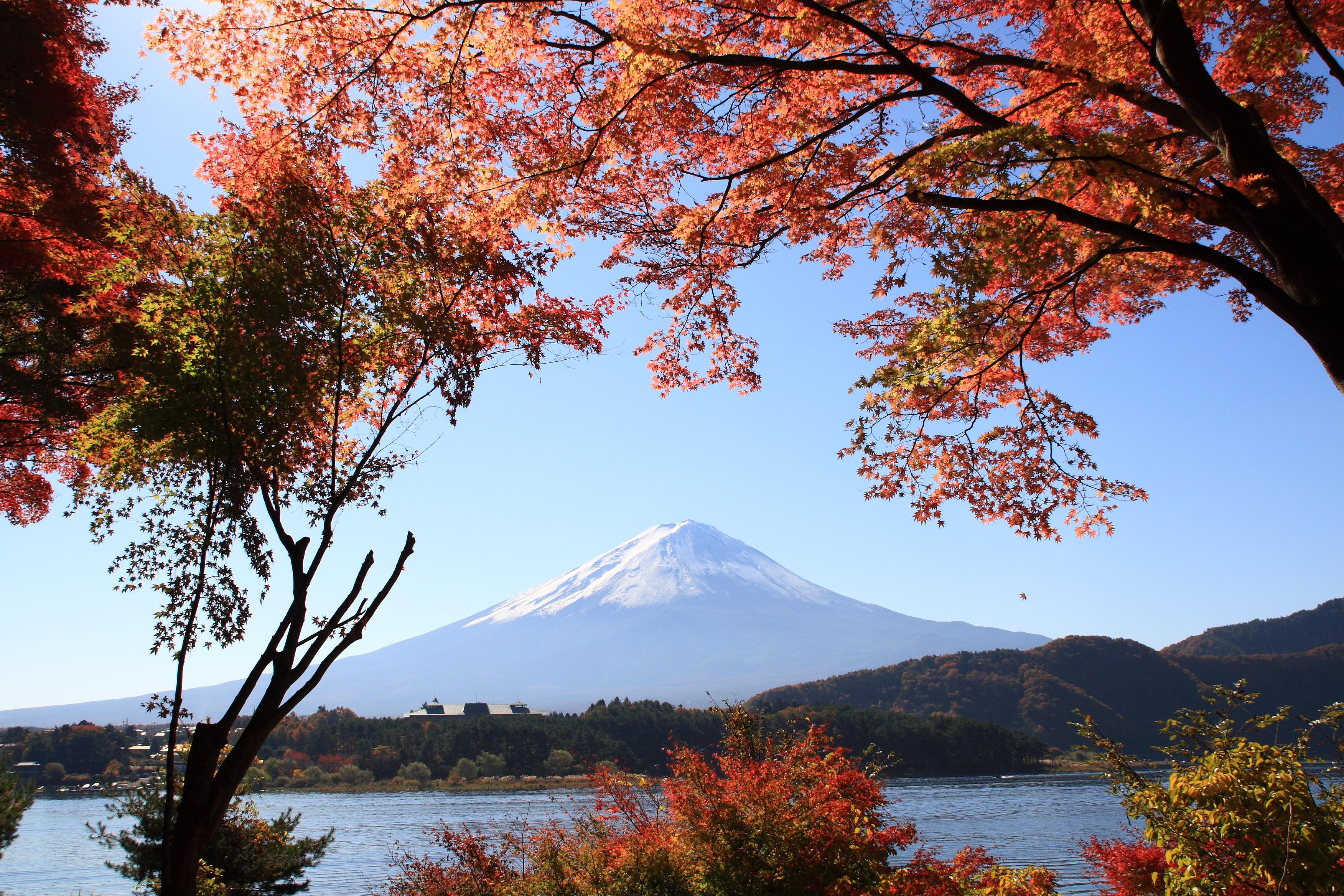 富士山と紅葉1