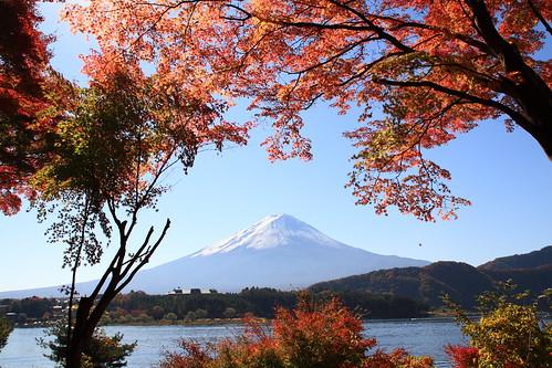 フリー画像| 自然風景| 山の風景| 富士山| 紅葉| 日本風景|      フリー素材|