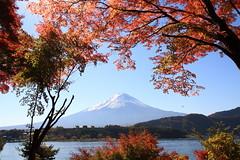 [フリー画像] [自然風景] [山の風景] [富士山] [紅葉] [日本風景]      [フリー素材]